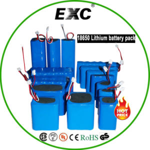 18650 Lithium Battery Hot Sales Rechargeable Battery Pack pictures & photos