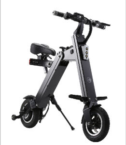 2wheel Foldable Electric Bike with Ce Certificate pictures & photos