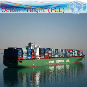 Container Shipping / Sea Shipment Logistic Agent / Shipping Forwarder (FCL 20′′40′′) pictures & photos