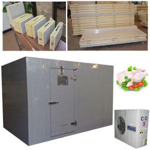 Customized Polyurethane Cold Freezer Room with Auto-Closing Hinge Door pictures & photos