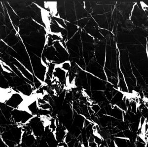 White Lightning Black Marble Slab Tile for Floor Step/Stair Wall pictures & photos