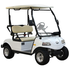 Electric Golf Cart with Solar Panel (DEL3022G, 2-Seater) pictures & photos