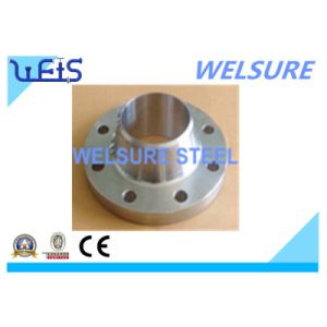 Stainless Steel Forged Flange Welding Neck Flange