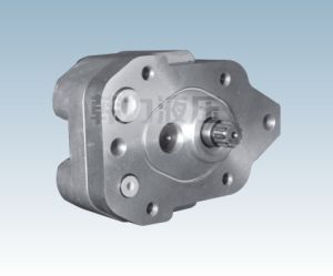 A8V55 Gear Pump (Rexroth) pictures & photos