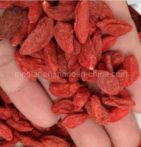 Sunshine Dried Goji Berry (Wolfberry) pictures & photos