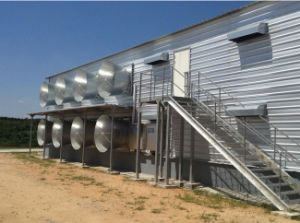 Light Weight Hot-Dipping Steel Structure Poultry Shed with Equipments pictures & photos