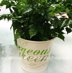 2016 Hotsale Indoor Paper Planter (YH-L255) pictures & photos