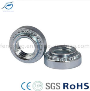 Stainless Steel Pem Nut Self-Clinching Nut