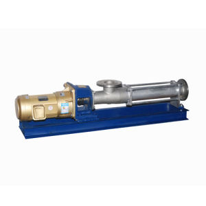 G Type Horizontal High Quality Low Speed Screw Pump pictures & photos