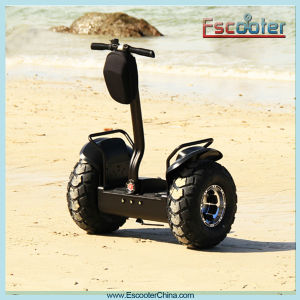 Myway 2 Wheel Adult Electric Scooters for Sale 2000W Motor pictures & photos