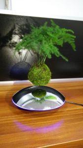 Bluetooth Levitating Speaker pictures & photos