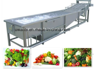 Dried Fruit Processing Brush Washing Machine 2018 New Designed pictures & photos