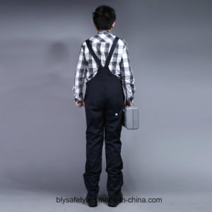Mens Heavy Twill Builders Work Dungarees Overall Trousers Bib and Brace pictures & photos