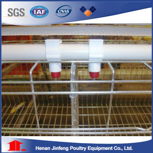 High Quality 3-4 Tiers Poulty Farm Equipment Pullet Chicen Cage pictures & photos
