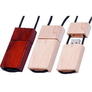 Gift USB Flash Drive (DG-SZ061)