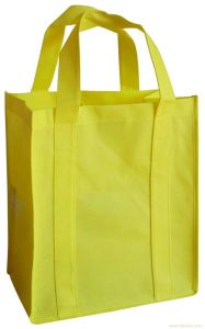 Promotional Fashion PP Non Woven Carry Bag pictures & photos