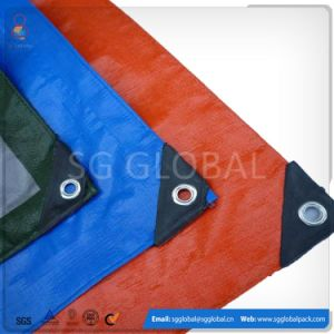 PE Coated Fabric Tarp Sheet pictures & photos