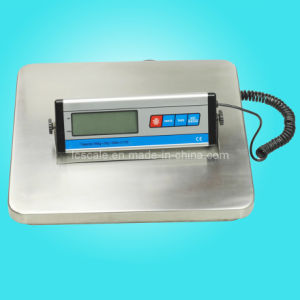 Digital Postal Scale pictures & photos