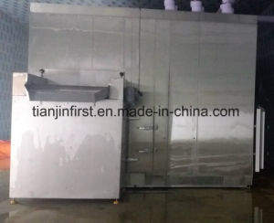 Fluidized Quick Freezing IQF Machine for Vegetable pictures & photos