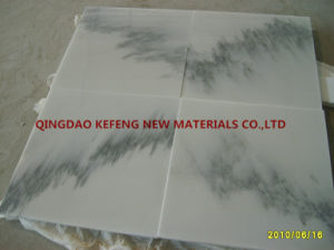 Natural Stone Black Stripe White Marble Wall Tile and Floor Tiles pictures & photos