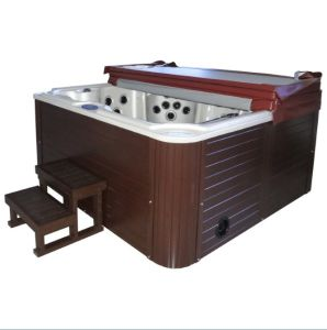 New Design Massage Bathtub Portable Outdoor SPA Jacuzzi with TV DVD pictures & photos