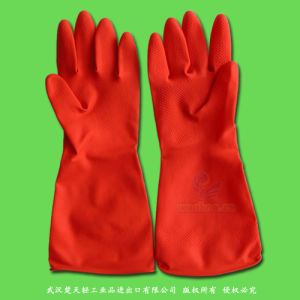 Clean Room Latex Gloves pictures & photos