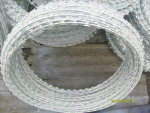 New Style Galvanized Razor Wire with Free Sample pictures & photos