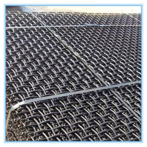 Top Quality Stainless Steel Crimped Wire Mesh / Woven Wire Mesh Manufacture (Factory Sale) pictures & photos