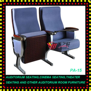 Theater Seating/Auditorium Seating/Cinema Seating (PA-15)