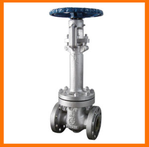 High Quality API & ANSI & DIN & Bs Gate Valve pictures & photos