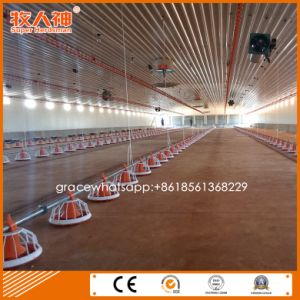 Complete Automatic Poultry Housing Equipment in Ec Shed for One Stop Service pictures & photos