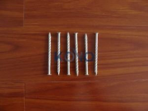 """3"""" Floor Nails for Africa pictures & photos"""