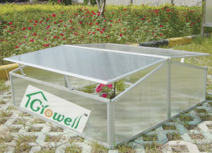 Cold Frame Greenhouse for Young Plants Growing (C302) pictures & photos