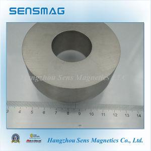 Manufacture Rare Earth Magnet Permanent Samarium Cobalt SmCo30 Magnet for Motor pictures & photos