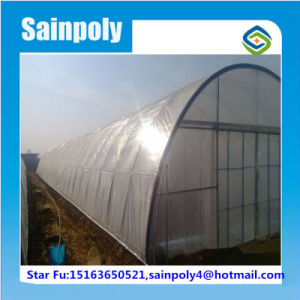 China Best Manufacturer Tunnel Greenhouse for Muskmelon pictures & photos