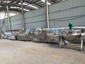 Large Vegeteable Handling Machine for Food Industry pictures & photos
