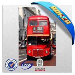 Tourist Souvenir for 3D Fridge Magnets pictures & photos