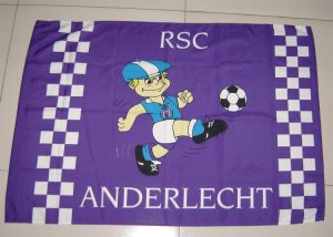 Festival Flag /Advertisement Flag /Decoration Flag/ Sports Flag 0027 pictures & photos