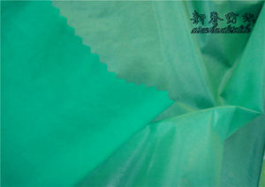 Nylon Taffeta with Soft-Color Foam (NT-2116SCF) pictures & photos