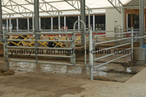 Hot Galvanized Livestock Cattle and Sheep Fence pictures & photos