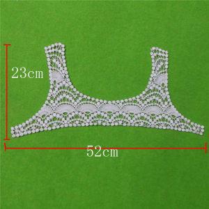 Garment Accessories Embroisdery Neckline Collar (cn125) pictures & photos