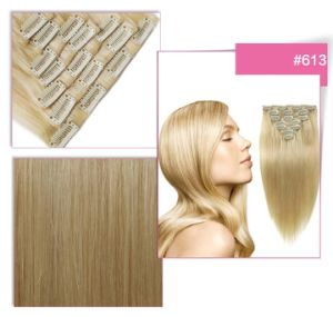 Clip in / 100% Human Hair Weft pictures & photos
