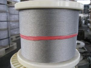 Stainless Steel Wire Rope A2/304 pictures & photos