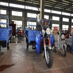 Farming and Orchard Using 200cc Gasoline/Diesel Motor Trike pictures & photos