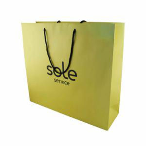 High Quality Stand up Paper Shopping Gift Bags for Advertisement (FLP-8947) pictures & photos