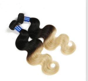 100% Unprocessed Brazilian Pure Virgin Hair pictures & photos