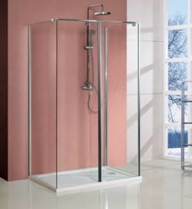 Frameless Elegant Walk -in Shower Door
