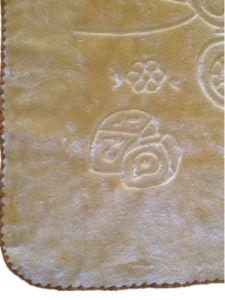 High Quality Single Ply Raschel Baby Blanket (SR-BB20170515) pictures & photos