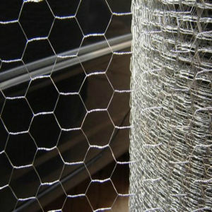 Galvanized Chicken Wire/Hot Dipped Galvanized Chicken Wire pictures & photos