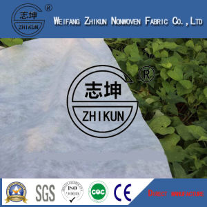 Anti-UV Protector in PP Polypropylene Nonwoven Fabric for Agriculture Cover pictures & photos